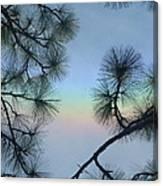 Colorful Sky Canvas Print