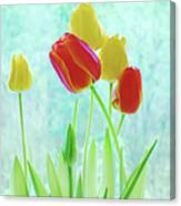 Colorful Spring Tulip Flowers Canvas Print