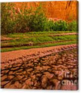 Colorful Streambed - Coyote Gulch - Utah Canvas Print
