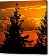 Colorful Sunset II Canvas Print