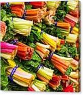 Colorful Swiss Chard Canvas Print