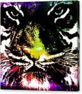 Colorful Tiger Abstract Grunge Face Canvas Print