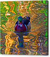 Colorful World Of Wood Duck Canvas Print