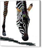 Colorful Zebra 2 Canvas Print