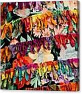 Colors 2 Canvas Print
