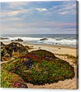 Colors And Texures Of The California Coast Canvas Print