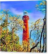 Colors At Barnegat Light Canvas Print