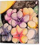 Colors Bloom Canvas Print