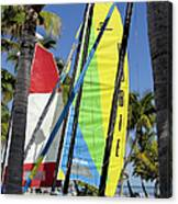 Key West Sail Colors Canvas Print