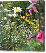 Colors In The Garden Canvas Print
