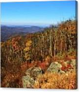 Colors Of Autumn In Shenandoah National Park Canvas Print