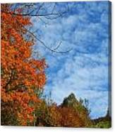 Colors Of Fall 2 Canvas Print