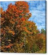 Colors Of Fall 4 Canvas Print