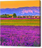Colors Of Provence Canvas Print