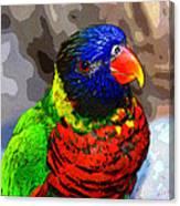 Colors Of The Lorikeet Canvas Print