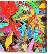 Coloured Leaves By M.l.d. Moerings  2009 Canvas Print