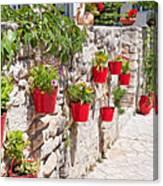 Colourful Flower Pots Canvas Print