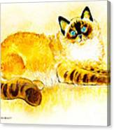 Colourpoint Cat Canvas Print