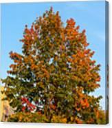 Colours Of Autumn Canvas Print