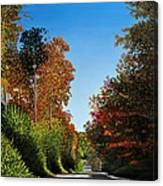 Colours Of Caledon Canvas Print