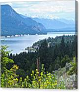 Columbia Lake Which Is Source Of The Columbia River-bc  Canvas Print