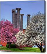 Columns And Dogwood Trees Canvas Print