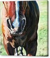 Comanche's Hello Canvas Print