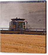 Combine Harvester And Cows Canvas Print