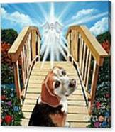 Come Walk With Me Over The Rainbow Bridge Canvas Print
