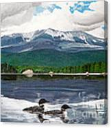 Common Loon On Togue Pond By Mount Katahdin Canvas Print