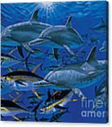 Companions Off00117 Canvas Print