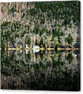 Complete Reflection Canvas Print