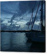 Composed Silence Canvas Print