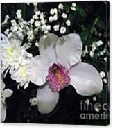 Composition With A Pink Orchid Canvas Print