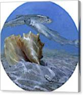 Conch And Ladyfish, 2001 Pair Canvas Print