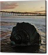 Conch Shell And Pier 2 10/17 Canvas Print