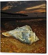 Conch Shell And Pier Predawn 2 10/18 Canvas Print