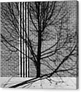 Concrete Tree II Canvas Print