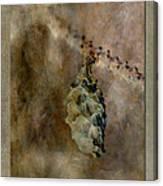 Cone Canvas Print