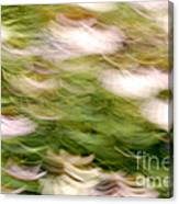 Coneflowers In The Breeze Canvas Print