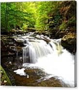 Conestoga Falls Canvas Print