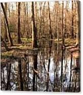 Congaree Reflections Canvas Print