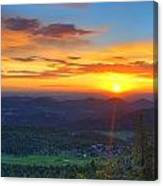 Conifer Sunrise Canvas Print