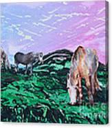 Connemara Ponies Canvas Print