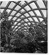Conservatory Denver Botanic Garden Black And White  Canvas Print