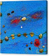 Constellation Of Pisces Canvas Print
