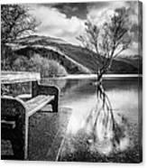 Contemplation In Monochrome Canvas Print