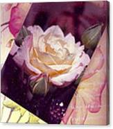 Continuation From Print To Photo Of White Rose Canvas Print