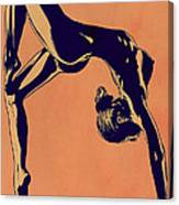 Contortionist Canvas Print