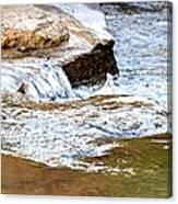 Converging Stream Water Canvas Print